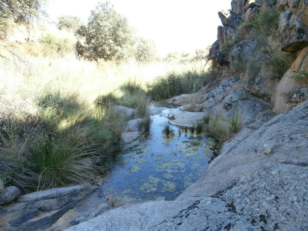 Arroyo de los Frailes