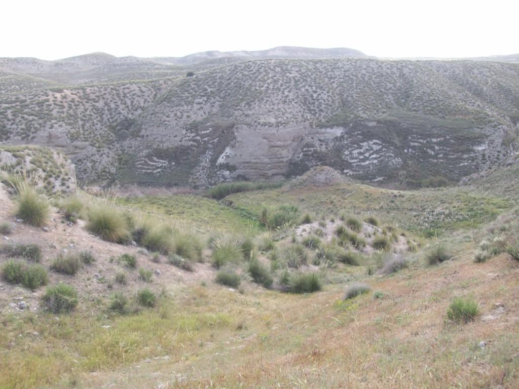 Barrancos que rodean a Villoria