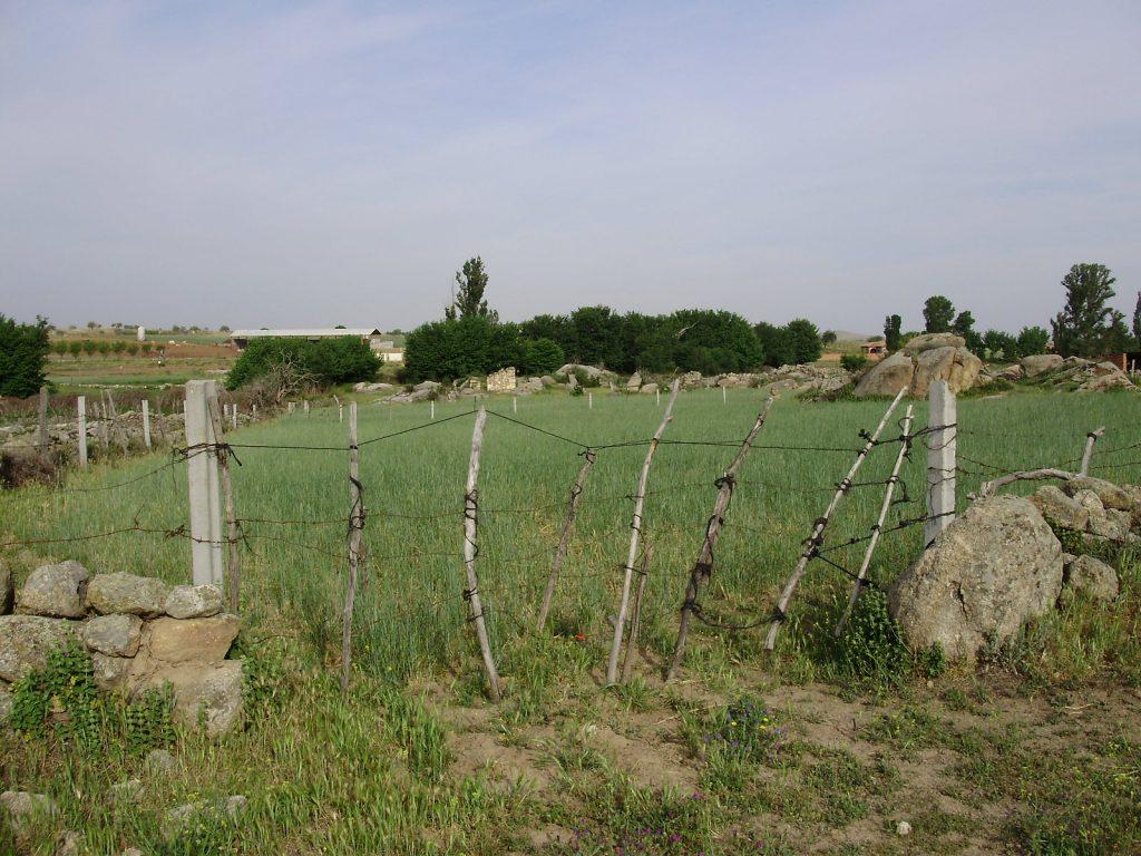 Campos y muros que rodean a Jumela
